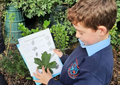 National Tree Day - Outdoor Research